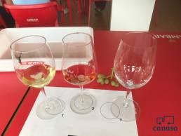 cata-vinos-formacion-canasa-distribucion-hosteleria-pamplona-navarra-1