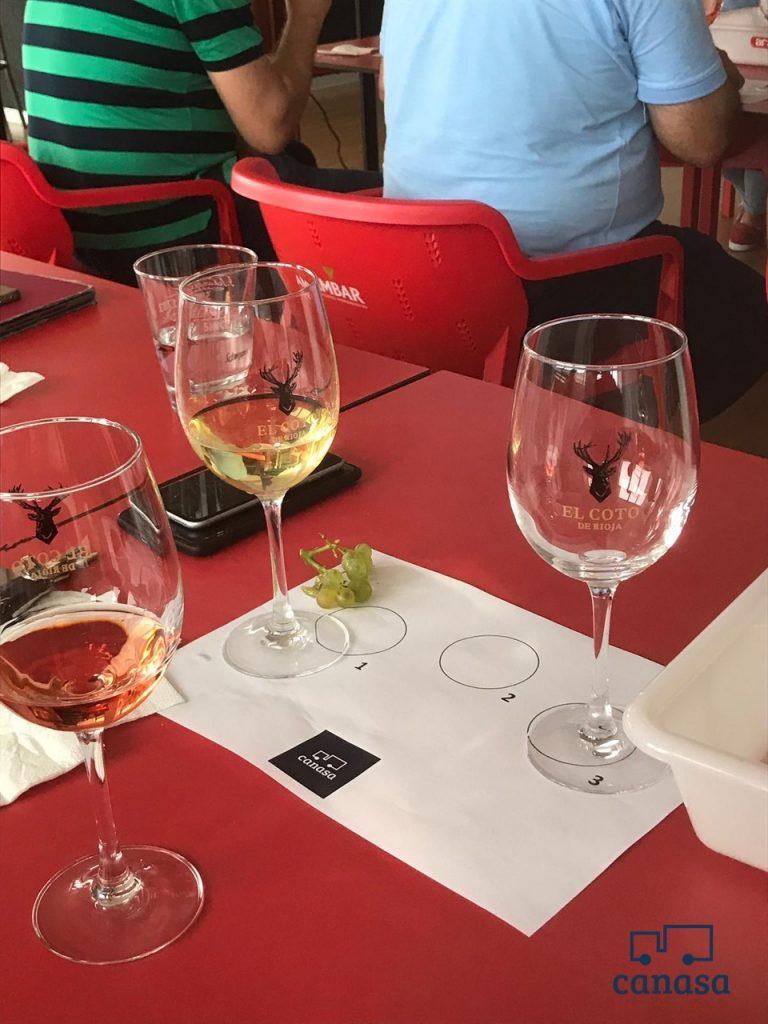 cata-vinos-formacion-canasa-distribucion-hosteleria-pamplona-navarra